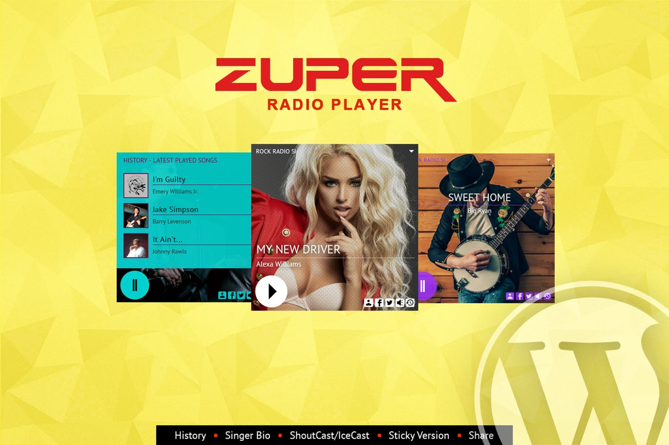Shoutcast and Icecast Radio Player - STORESHOCK - Themes and web